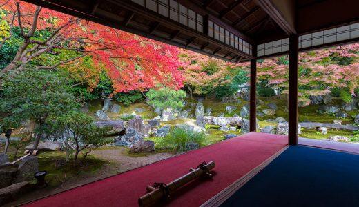 京都府でパパ活始めよう!パパ活の意味とやり方をご紹介!交際クラブ&パパ活サイトを大公開!