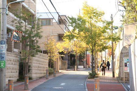 渋谷・松濤でパパ活を始めよう!関東のパパ活女子お勧めの交際クラブ&パパ活サイトのご紹介!